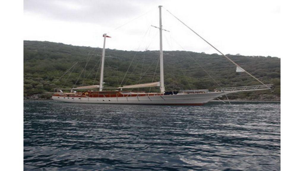 G138 (11)